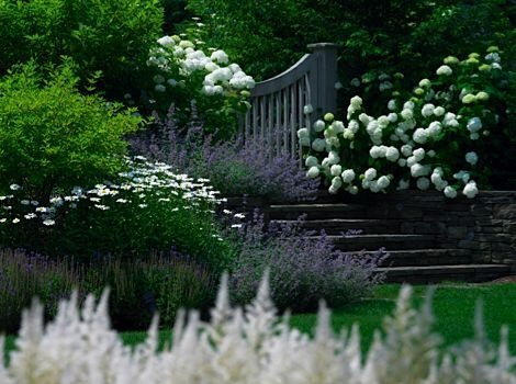 The white garden french grey for British landscape architects