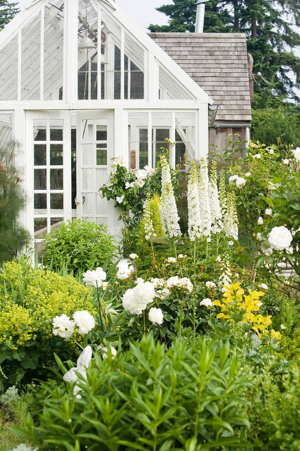 white garden and greenhouse
